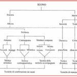 Fig.1 - Prospetto delle strutture musicali e delle rispettive categorie tecniche.