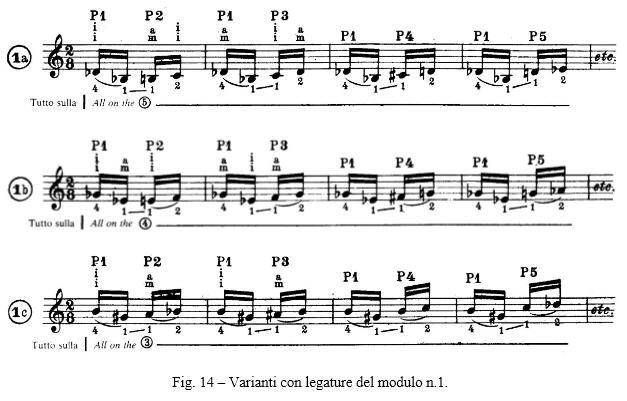 Fig. 14 – Varianti con legature del modulo n.1.